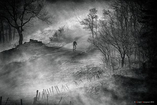 Illusioni d'inverno