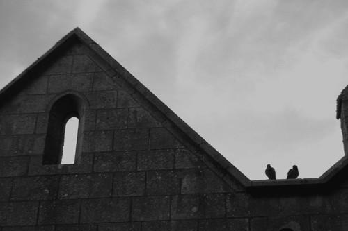 Ilôt breton (I)