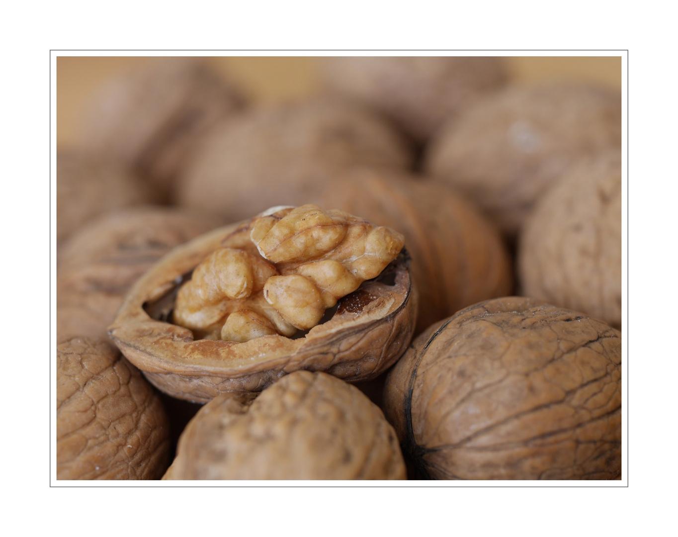 I'm a nut - I'm a walnut ...