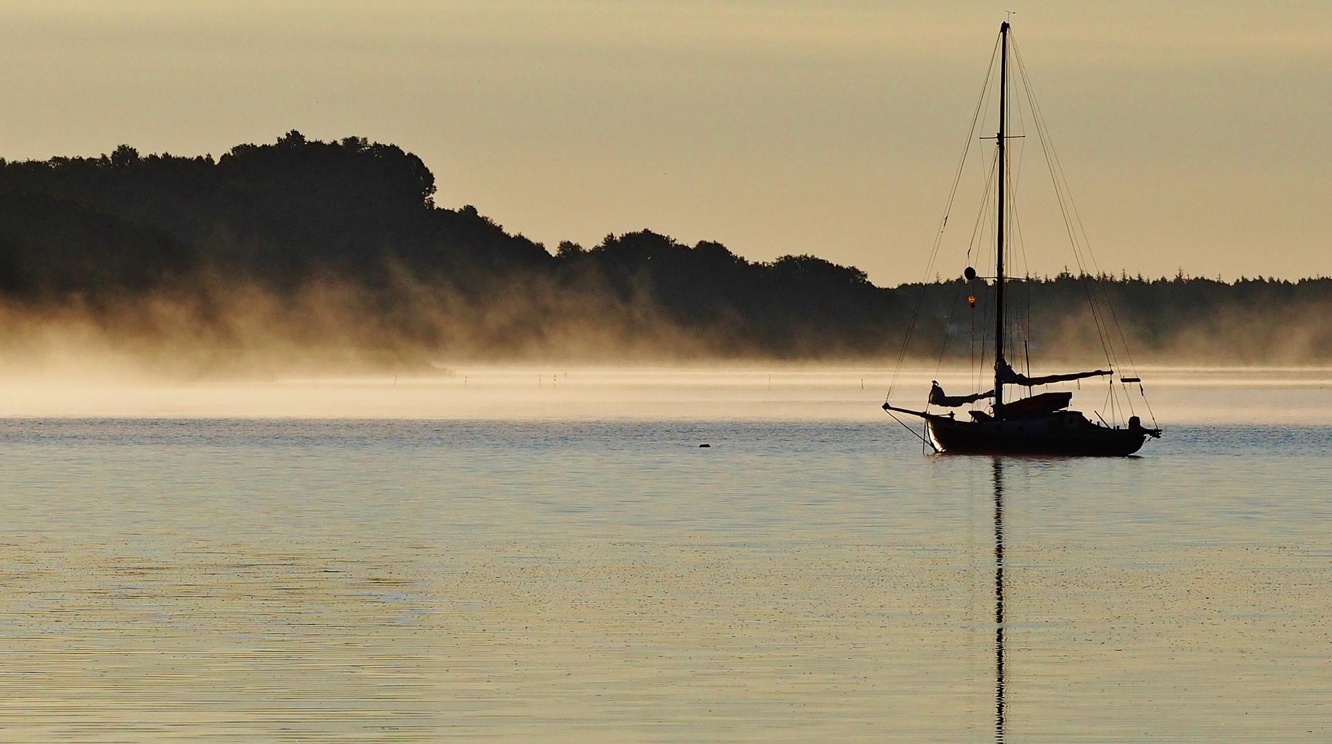 Im Äther des frühen Morgen .....