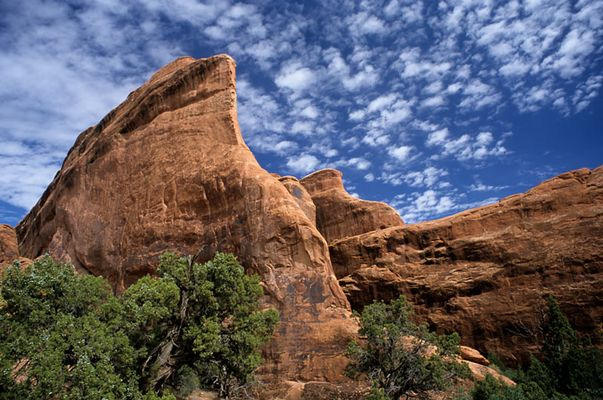 Im Arches Canyon