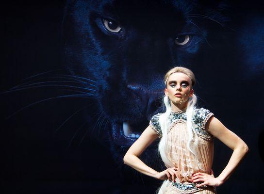 Im Auge des Panthers