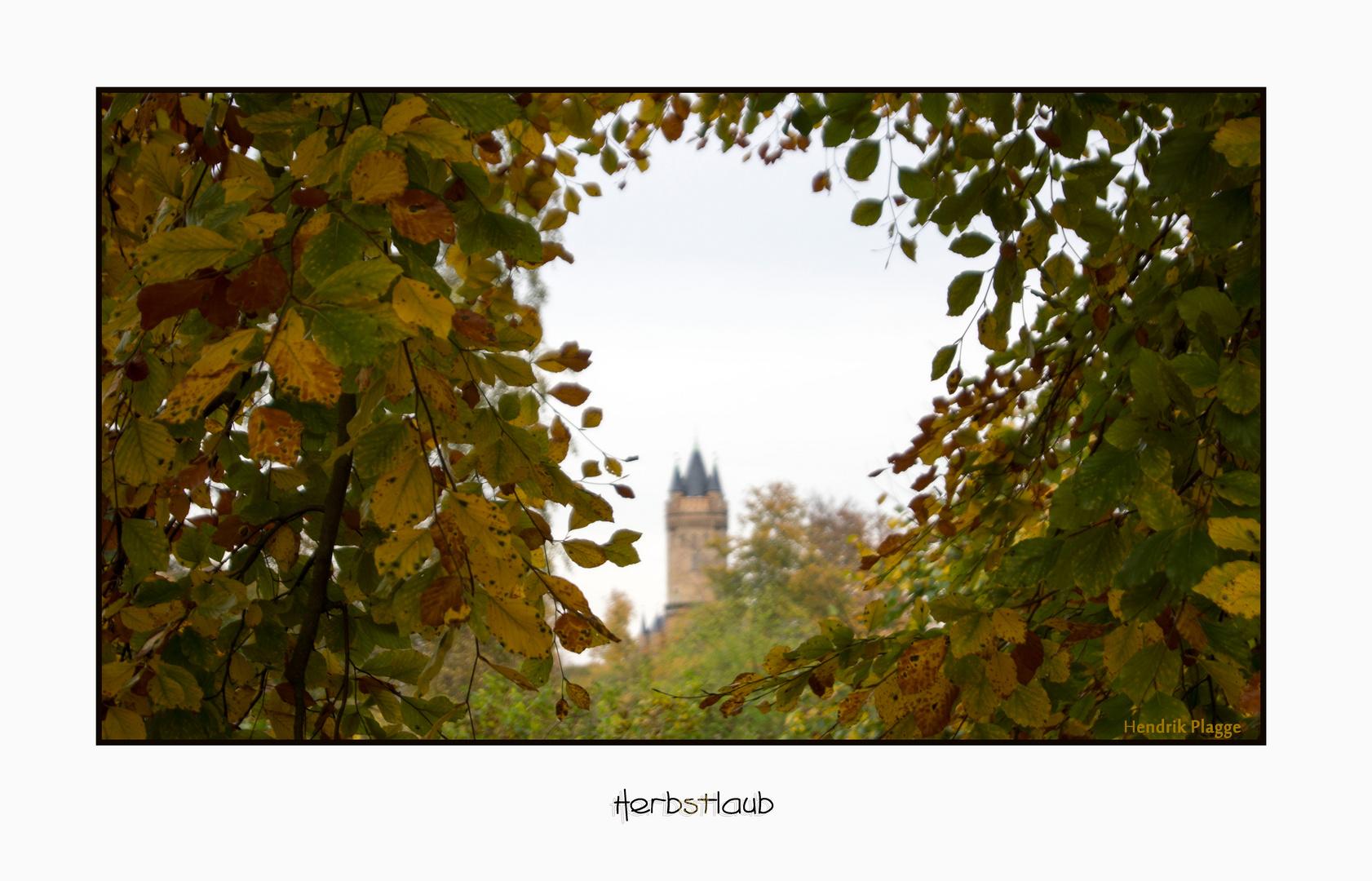 .....im Babelsberger Park