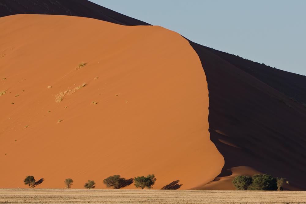 im Bann der Wüste
