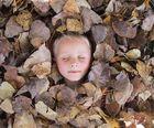 im Blätterbad