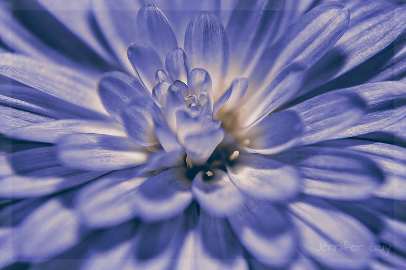 I'm blue......