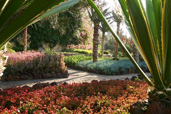 Im Botanischen Garten von Funchal