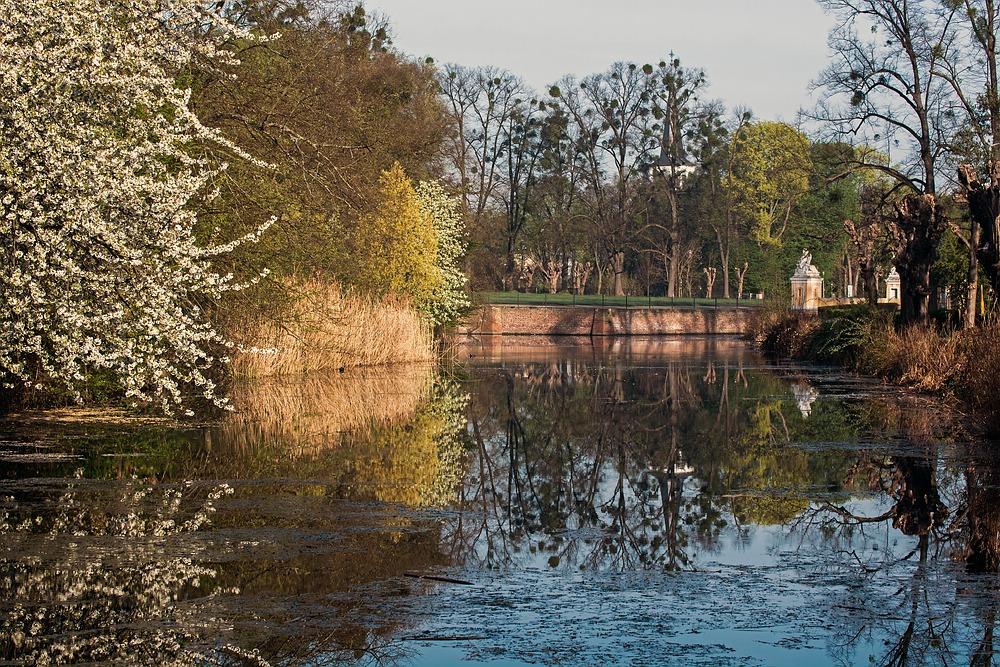 Im Brühler Schlosspark