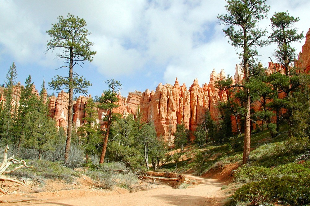 Im Bryce Canyon