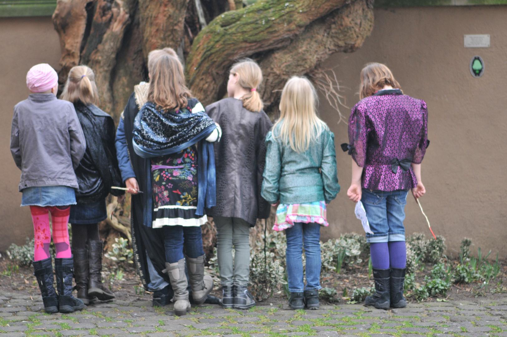 Im Burghof am Maulbeerbaum