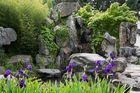 Im chinesischen Garten