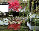Im Chinesischen Garten . . .