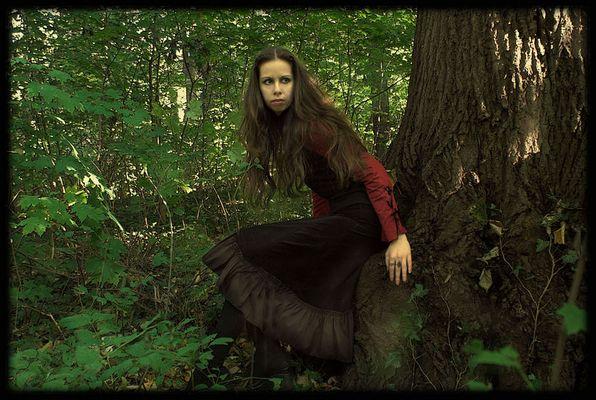im dichten Wald...