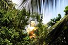 im Dschungel -- Sri Lanka 2005