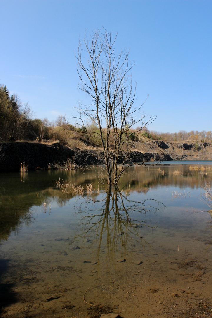 Im ehemaligen Basaltsteinbruch auf dem Schafberg in Baruth