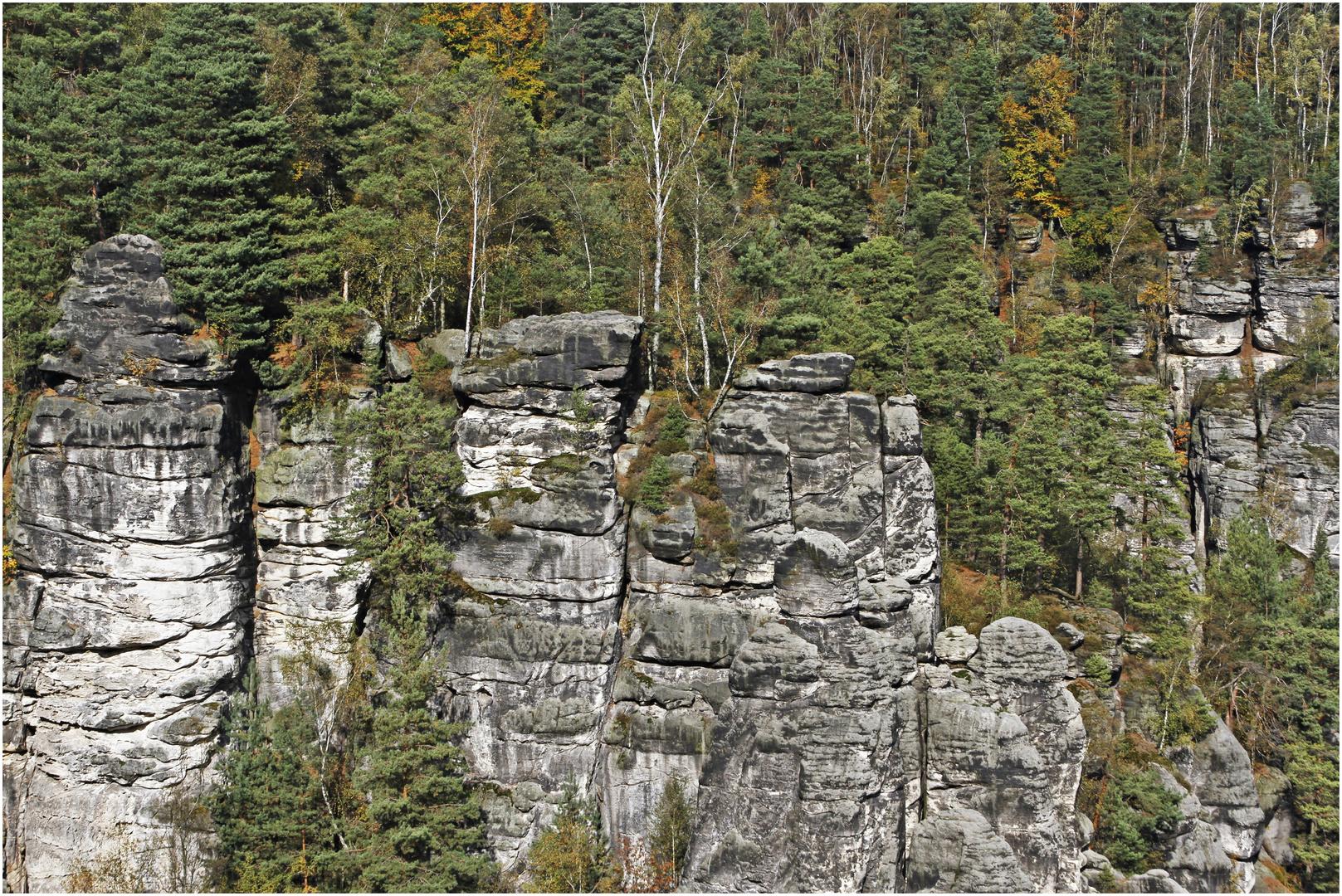 im Eldsandsteingebirge