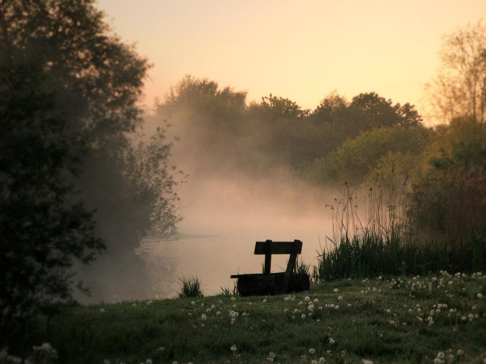 Im ersten Morgenlicht