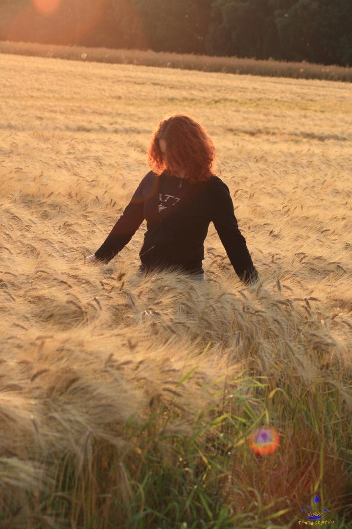 Im Feld
