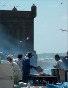 Im Fischereihafen von Essaouira