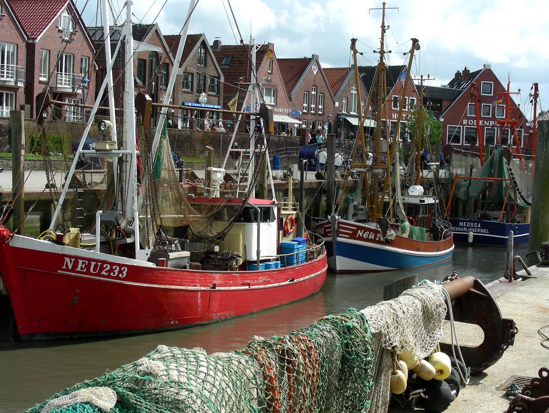 Im Fischerhafen...