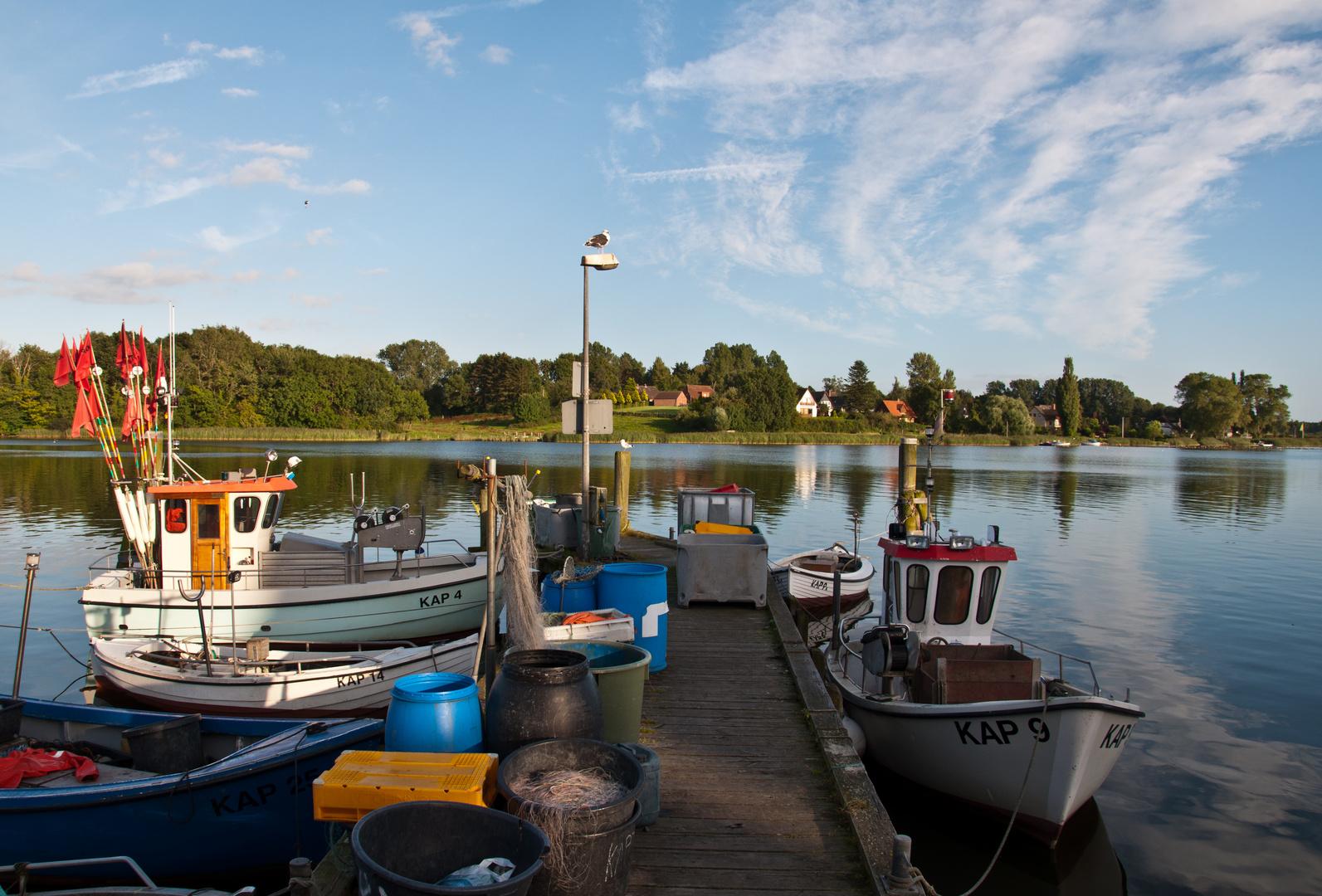 Im Fischerhafen von Kappeln (II)