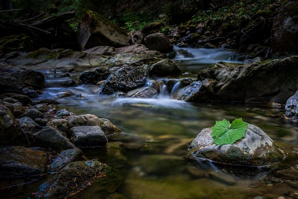 Im Fluss...
