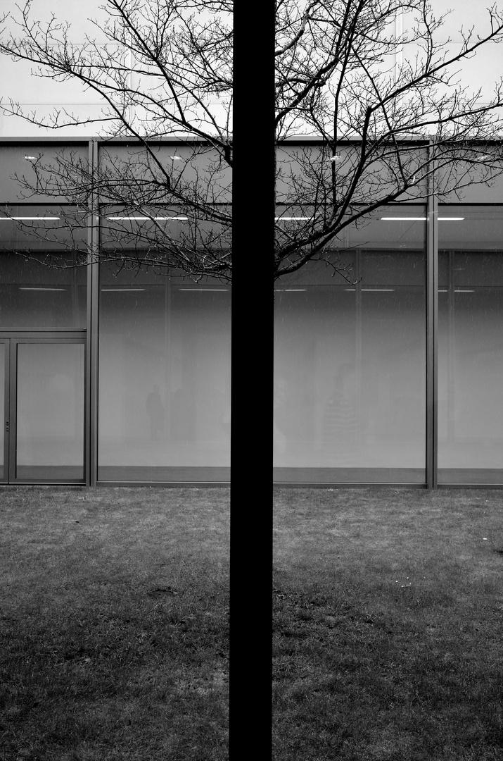 Im Folkwangmuseum Essen