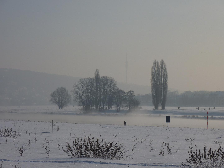 im Frühdunst am Elbufer - Blick zum Fernsehturm