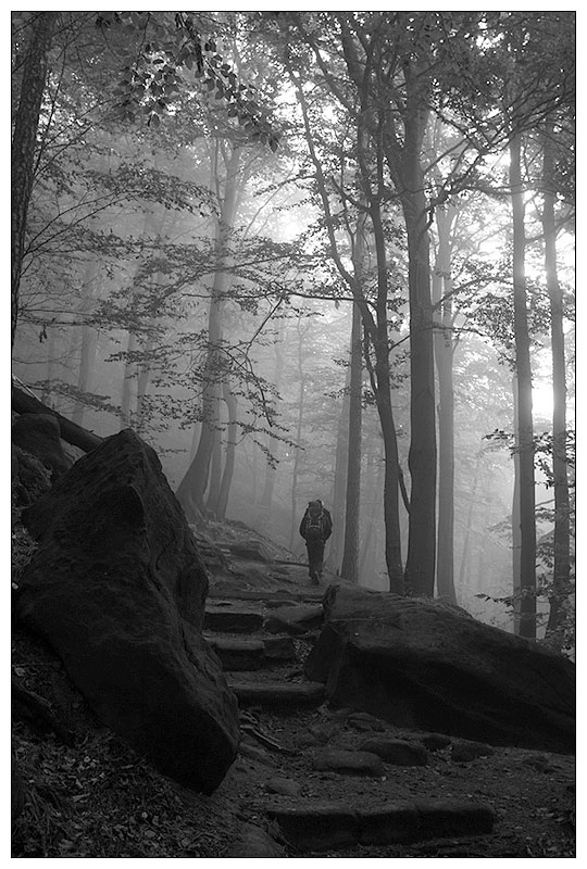 Im Frühtau zu Berge wir gehn.....