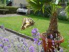 Im Garten