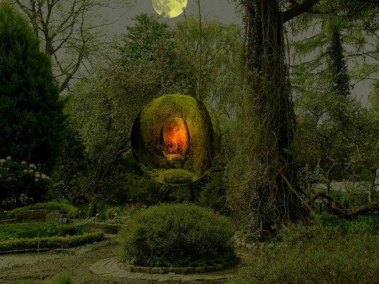Im Garten der Gefühle...