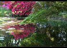 Im Garten Eden...