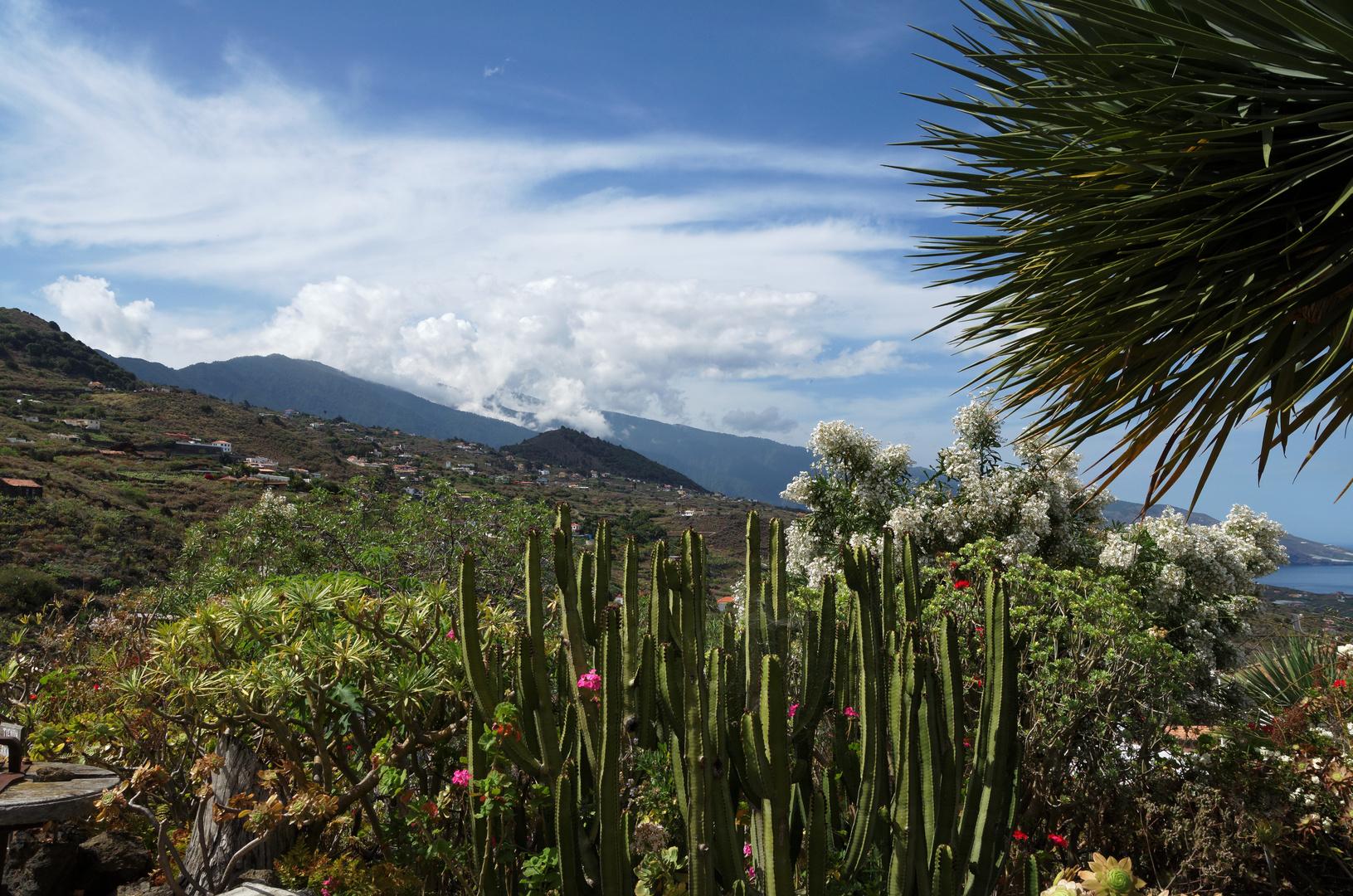 Im Garten von Ceramica El Molino, Mazo, La Palma, Mai 2012