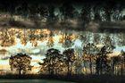 Im Gerzensee spiegelt Morgenlicht und Himmelblau