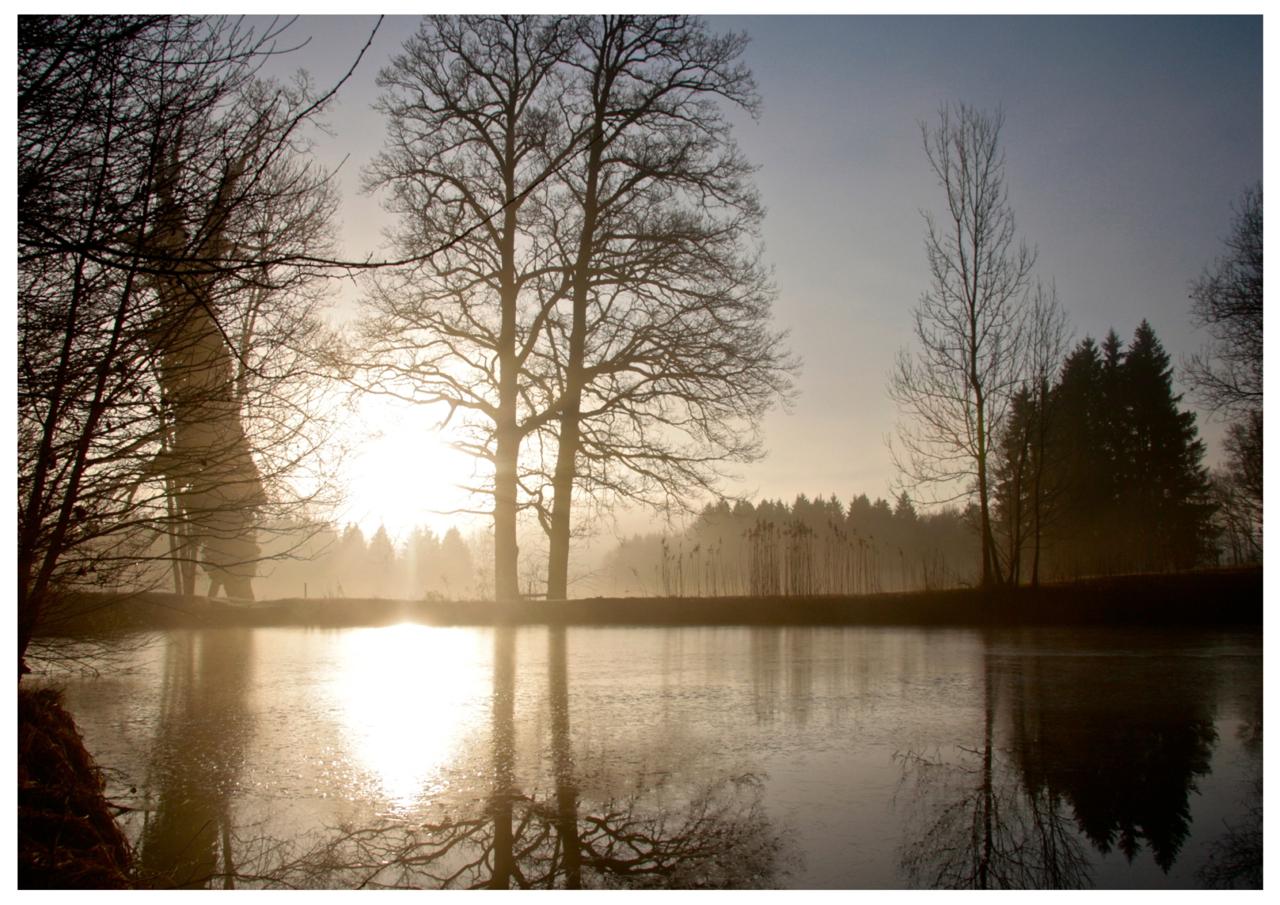 im Glanz der Morgensonne