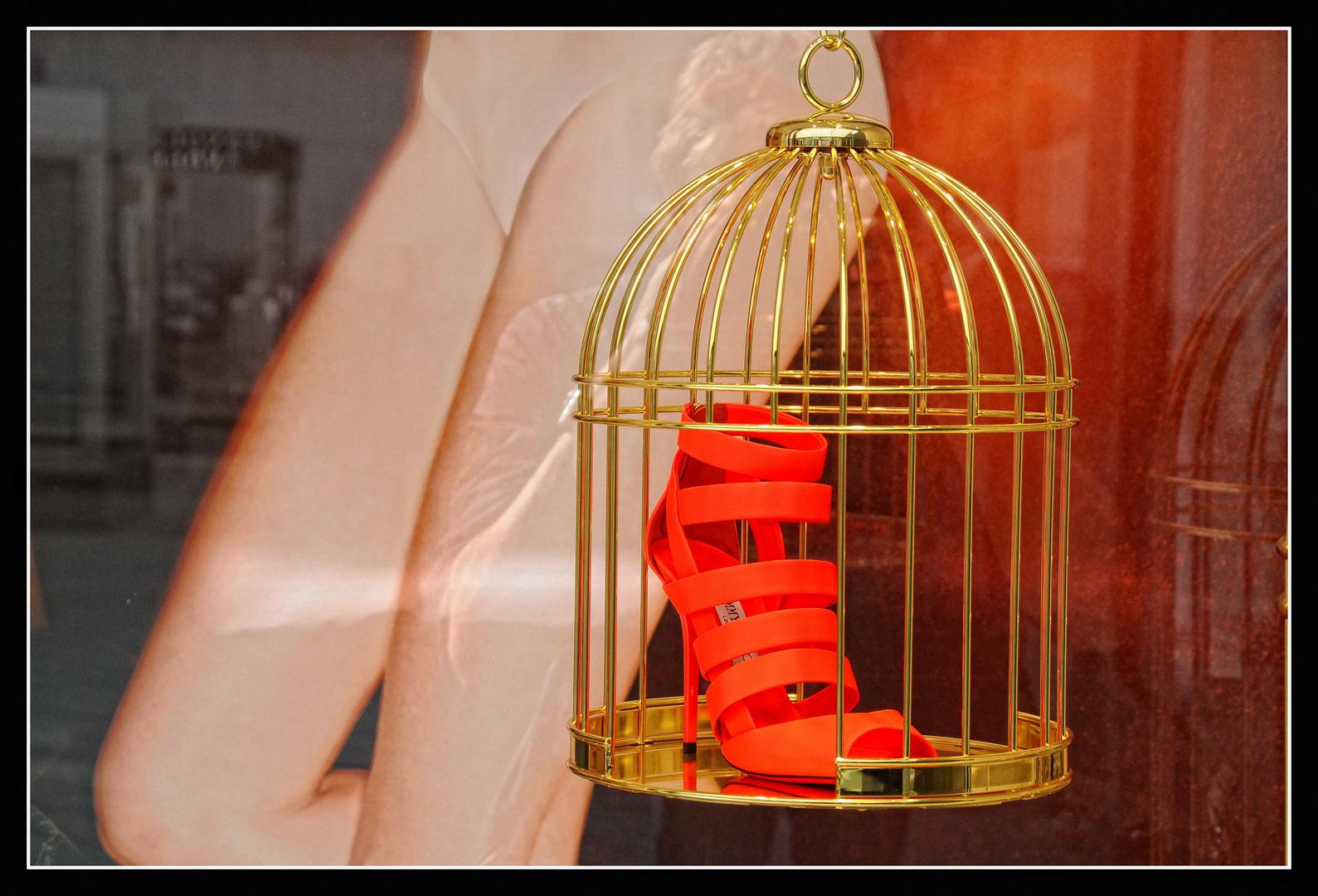 Im goldenen Käfig ...