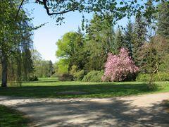 Im Greizer Park 1