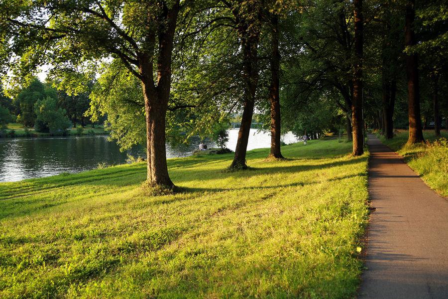 Im Grünen an der Donau -3-