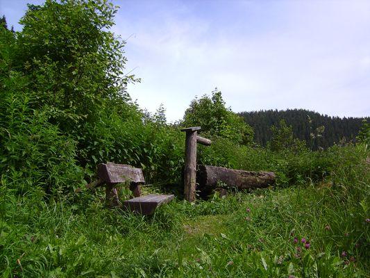 Im Grünen entspannen