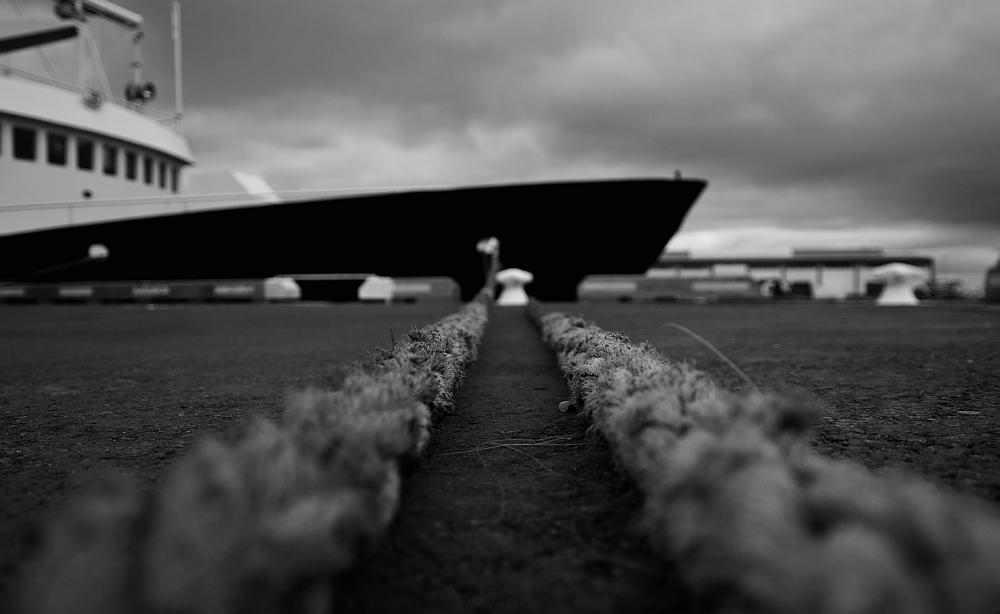 ...im Hafen von Reykjavik
