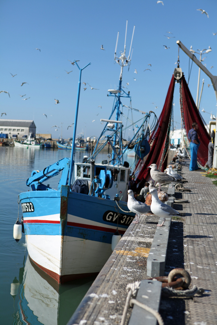 """Im Hafen von """"Saint Guenole"""""""