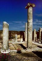 Im heiligen Bezirk, Delos