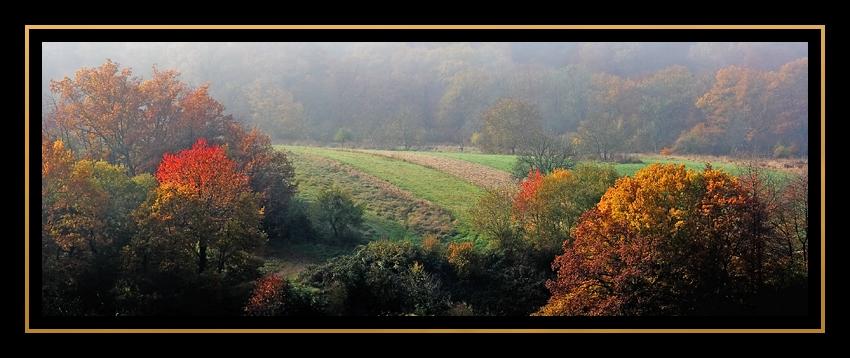 Im Herbstrausch...