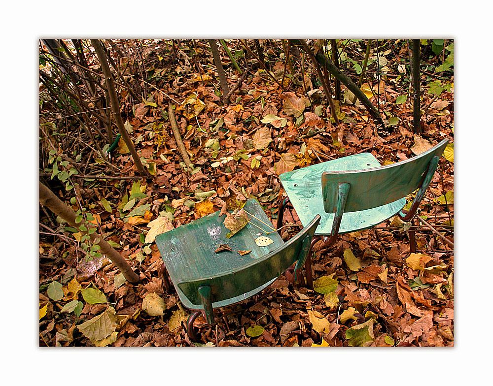 . . . im Herbstwald
