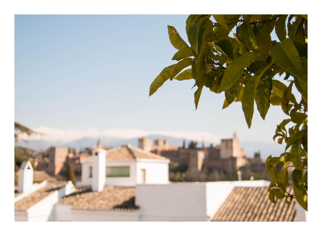 im Hintergrund die Alhambra