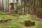 Im Hochwald (2)
