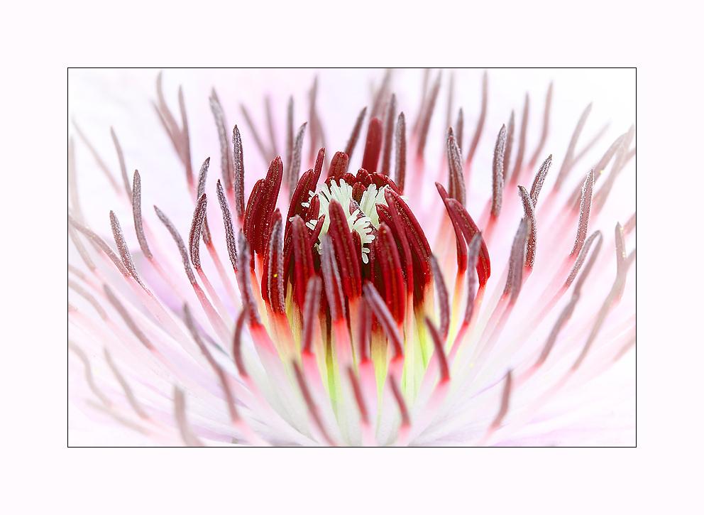 Im Innern brennt das Feuer