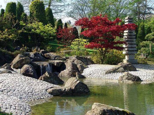Im jap. Garten in Bonn