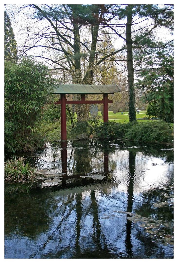 im japanischen Garten der BAYER AG in Leverkusen II