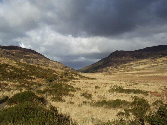 im Killarney National Park (Irland)
